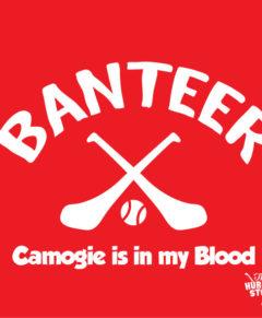 Banteer Camogie